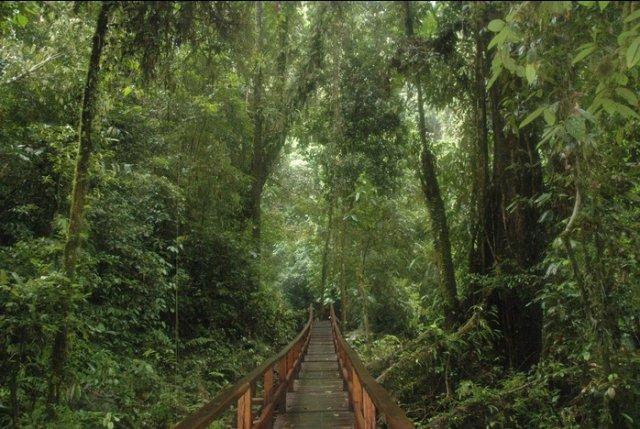 Wisata di Hutan Konservasi Kabupaten Malinau