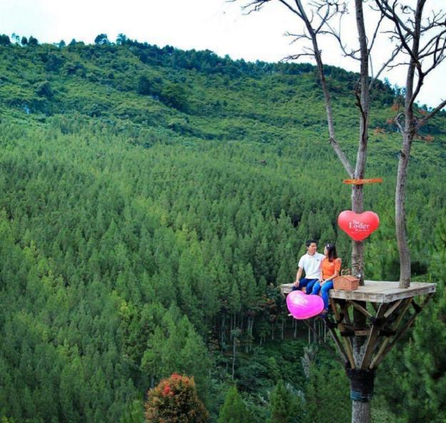 The Lodge Maribaya Si Destinasi Wisata Instagramable Dari